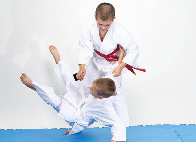 Learn Judo in Tampa, Florida | Tampa Florida Judo
